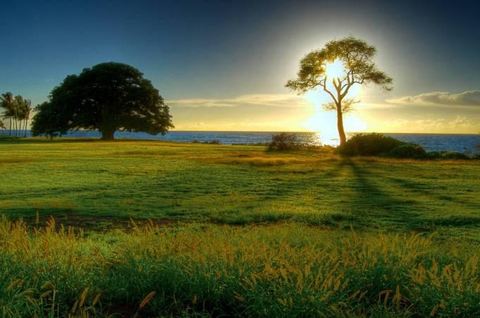 24701-nature-natural-beauty
