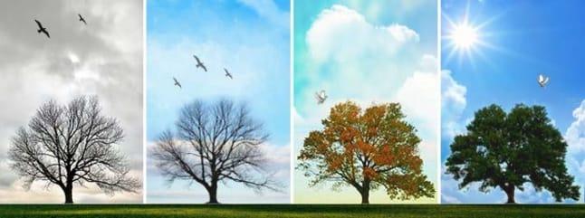 تغير أو مت .. طبيعة التغيير والتطوير