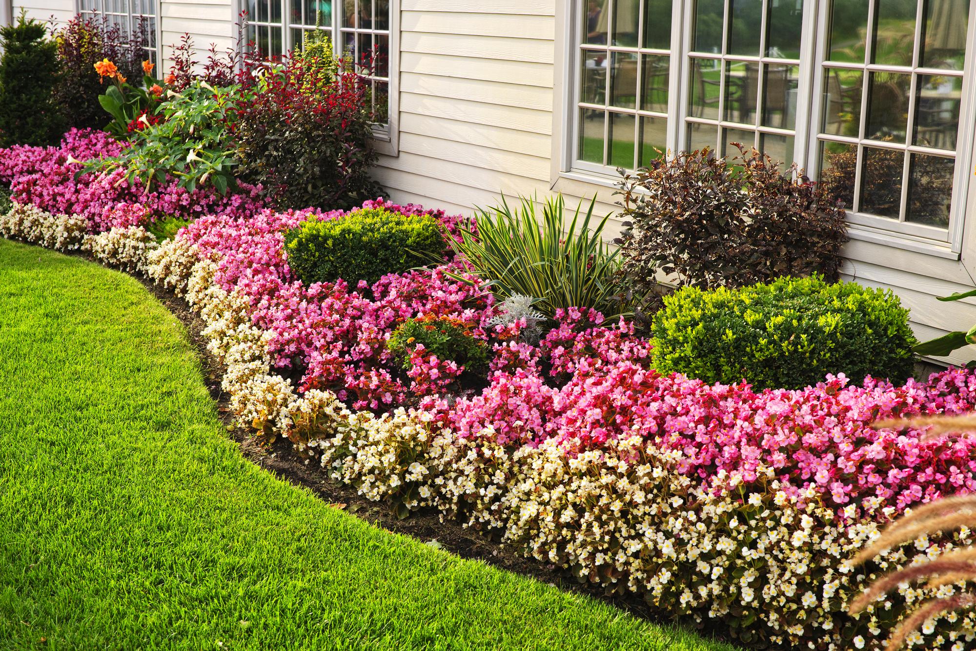 Glancing Choose Among Landscaping Ideas Consider Planting Perennials That Will Return Eachyear You Can A Backyard Barnhardt outdoor Beautiful Backyard Landscaping Ideas