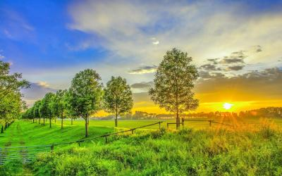 HD Golden sunset on the green field Wallpaper | Download Free - 150102