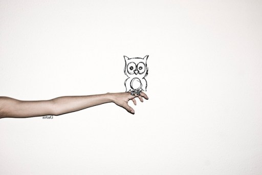 owl and arm