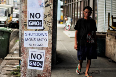 Ban on GMO crops, subsidy for 'healthy' agriculture sought
