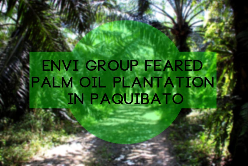 Pollution, food and water scarcity in oil palm feared