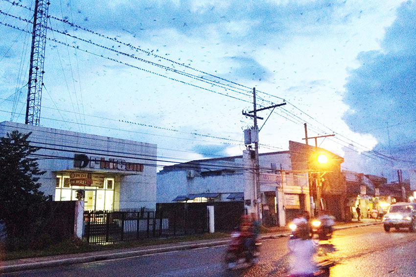 In Sto. Tomas town, 'layang-layang' offers distraction than attraction