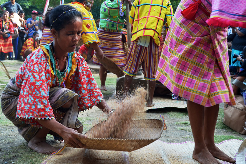 PHOTOS | Bibinayo: traditional rice pounding