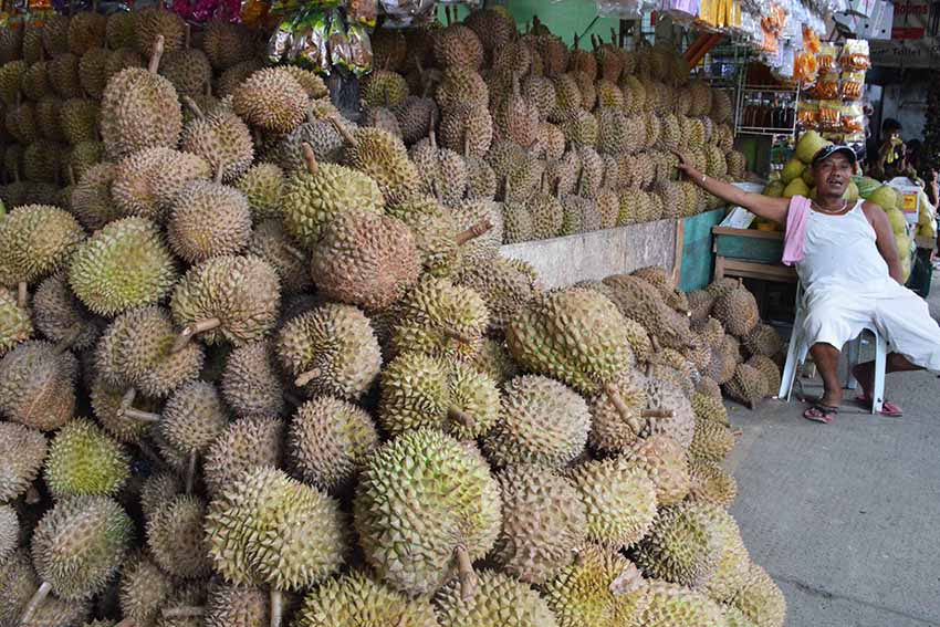 Durian production likely to increase in this year's Kadayawan festival
