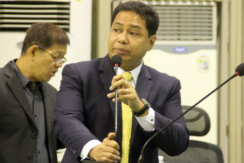 Davao City council to form 4 new committees
