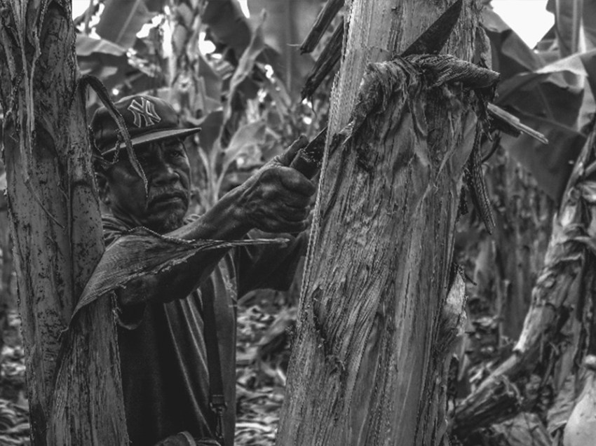 'Pagbungkal': Photo exhibit in UP Mindanao tackles farmers struggles