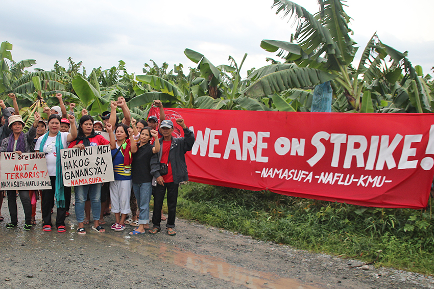 Comval plantation workers strike paralyzes Japanese-owned banana company