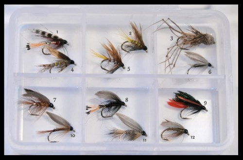 Wet-Flies-Assortment