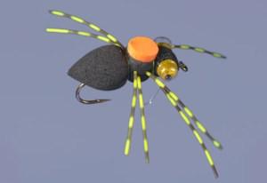 whitlock-spider