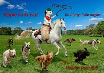Yippie Yo Ki Yay, it's Paco's Holiday Roundup!