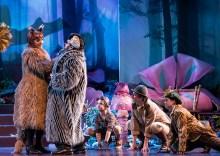 """Opera Santa Barbara's """"The Cunning Little vixen"""" 3/1/17 The Granada Theatre"""