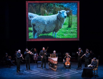 "Perfect match for J.S. Bach's ""Sheep may safely graze"" - CAMA Santa Barbara 3/8/17 The Lobero Theatre"