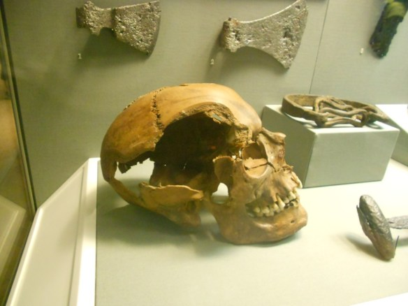 Skull in the National Museum of Archaeology and History