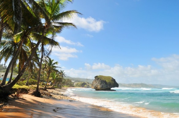 The picturesque Bathsheba Park.