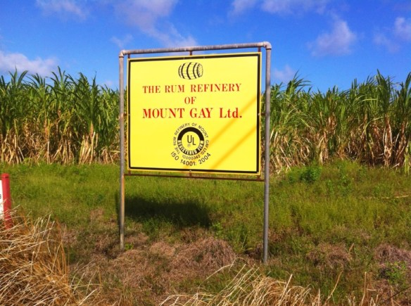 The oldest existing rum, Mount Gay.