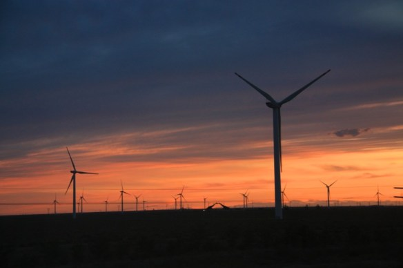 Passing a wind farm at dusk.