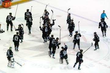 Sharks hockey fan salute