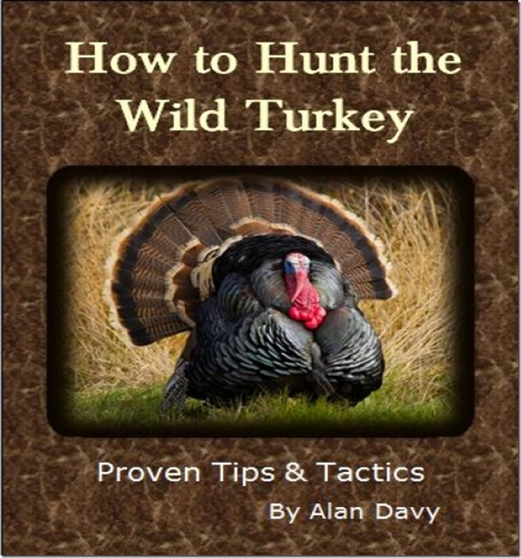 Turkey-Ebook-resized-cover-page_thumb.jpg