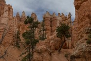 We decided to keep going on the Navajo Trail