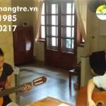 Cần gia sư dạy đàn Guitar tại quận 6