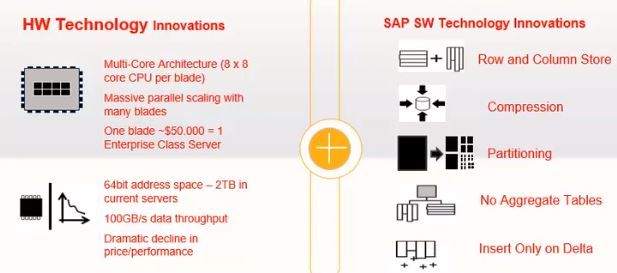 SAP HANA Structures of both hardware and software