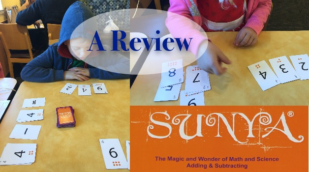 Sunya: A Review