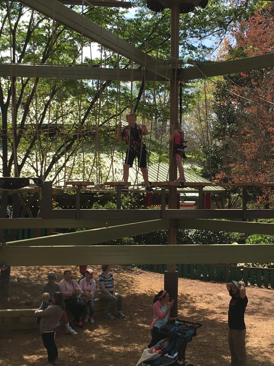 Zip lining at the Zoo