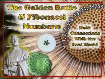 Golden-Ratio-LifterLMS-Course-COVER-960X720