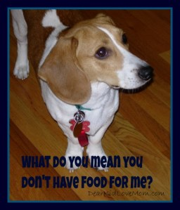What do you mean you don't have food for me? DearKidLoveMom.com