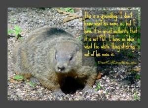 Groundhog Day and My Solution to the Frozen Vortex of Winter DearKidLoveMom.com