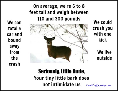 Seriously Little Dude, Deer vs little dog DearKidLoveMom.com