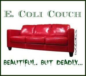 E Coli Couch Beautiful but Deadly DearKidLoveMom.com