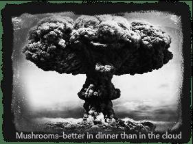 Mushrooms -- Better in dinner than in the Cloud DearKidLoveMom.com