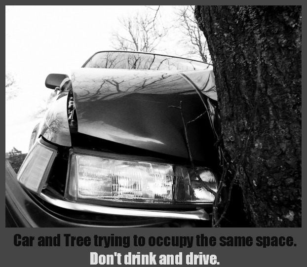 Car and Tree trying to occupy the same space. No one wins. Don't drink and drive. DearKidLoveMom.com