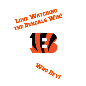 Love Watching the Bengals Win! Who Dey! DearKidLoveMom.com