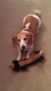 Booker-and-new-toy