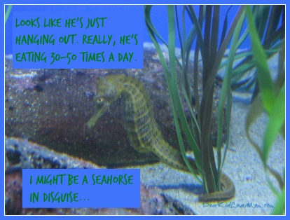 I might be a seahorse in disguise... DearKidLoveMom.com