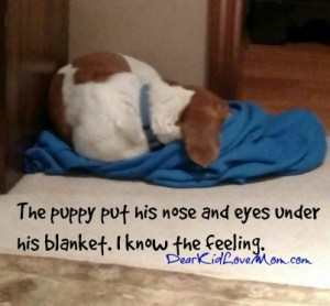 The puppy put his nose and eyes under his blanket. I know the feeling. DearKidLoveMom.com