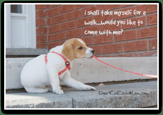 i shall take myself for a walk...would you like to accompany me? DearKidLoveMom.com