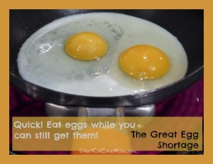 Quick! Eat eggs while you can still get them! The Great Egg Shortage. DearKidLoveMom.com