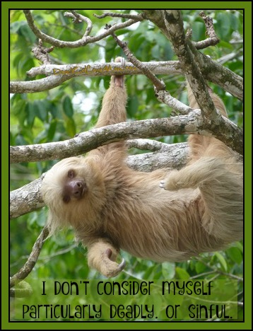I don't consider myself particularly deadly. Or sinful. (Sloths get a bad rap.) DearKidLoveMom.com