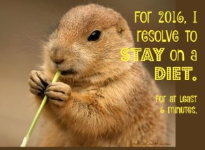 For 2016, I resolve to stay on a diet. For at least 6 minutes. DearKidLoveMom.com