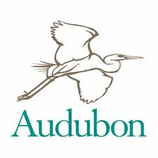 John James Audubon went out into Nature to identify and paint birds so that he could have a society named after him. DearKidLoveMom.com