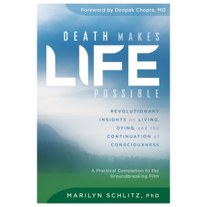 Death Makes Life Possible Book
