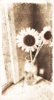 Vintage Sunflowers in Vase