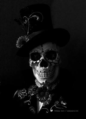 Skull-bw-DB-2015-2sg