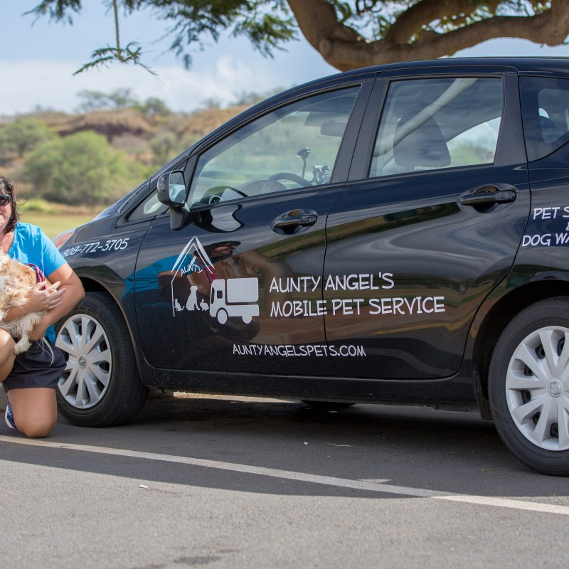 Local Business of the Week – Aunty Angel's Mobile Pet Service