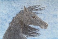 Listening to the Wind - Horse Portrait